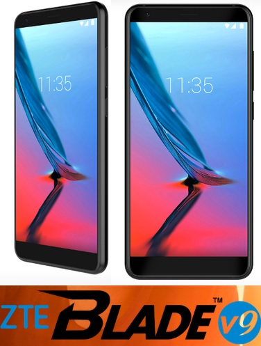 ZTE Blade V9 price for online store India pic